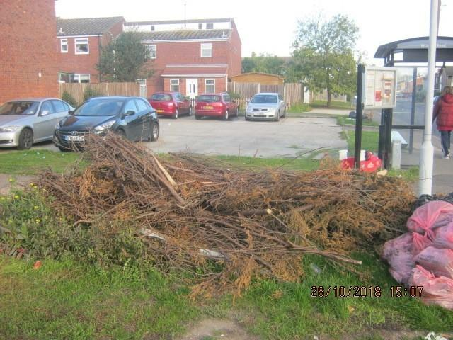 Stephen Cook dumped this waste just 75 yards from his house