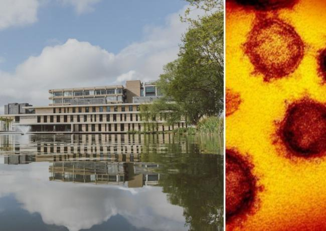 Here's how many University of Essex students and staff currently have coronavirus