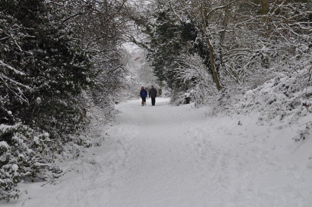 Braintree: Snow shuts schools and causes travel problem
