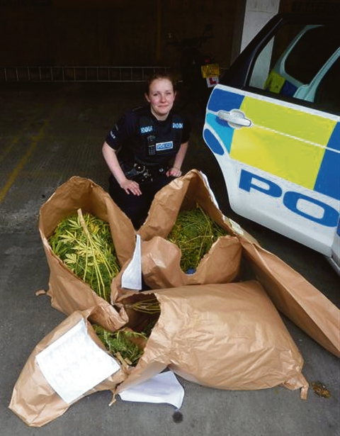 Bags of drugs – PC Lucy Bearman with cannabis found on Canvey