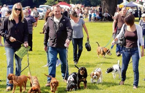 Some of the visitors to the Essex Dog Day