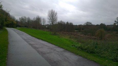 Witham: Dog walker's concerns of River Walk