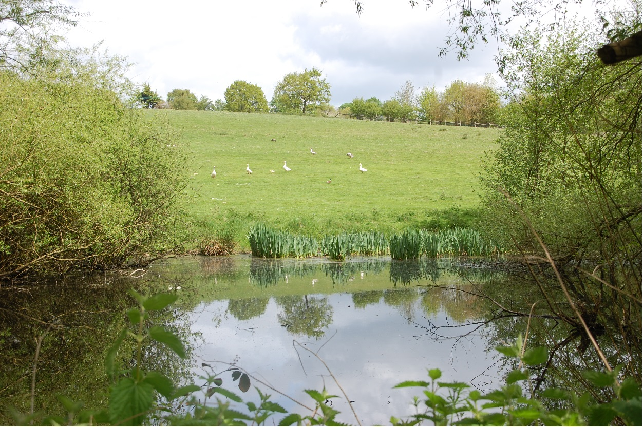 Bid to protect more of our countryside is submitted