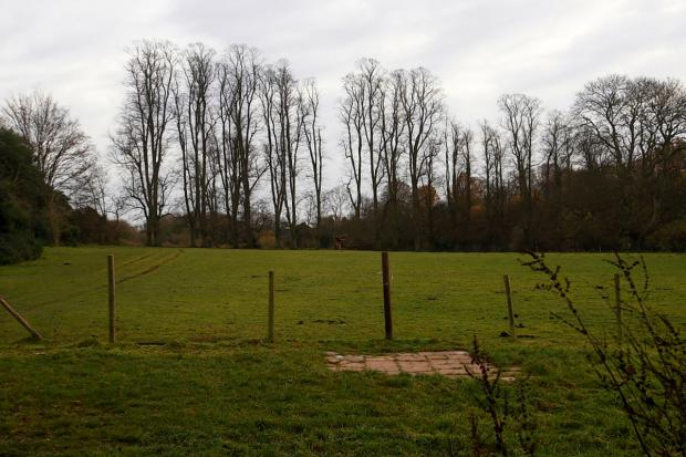 Spared: Green belt land could stay protected