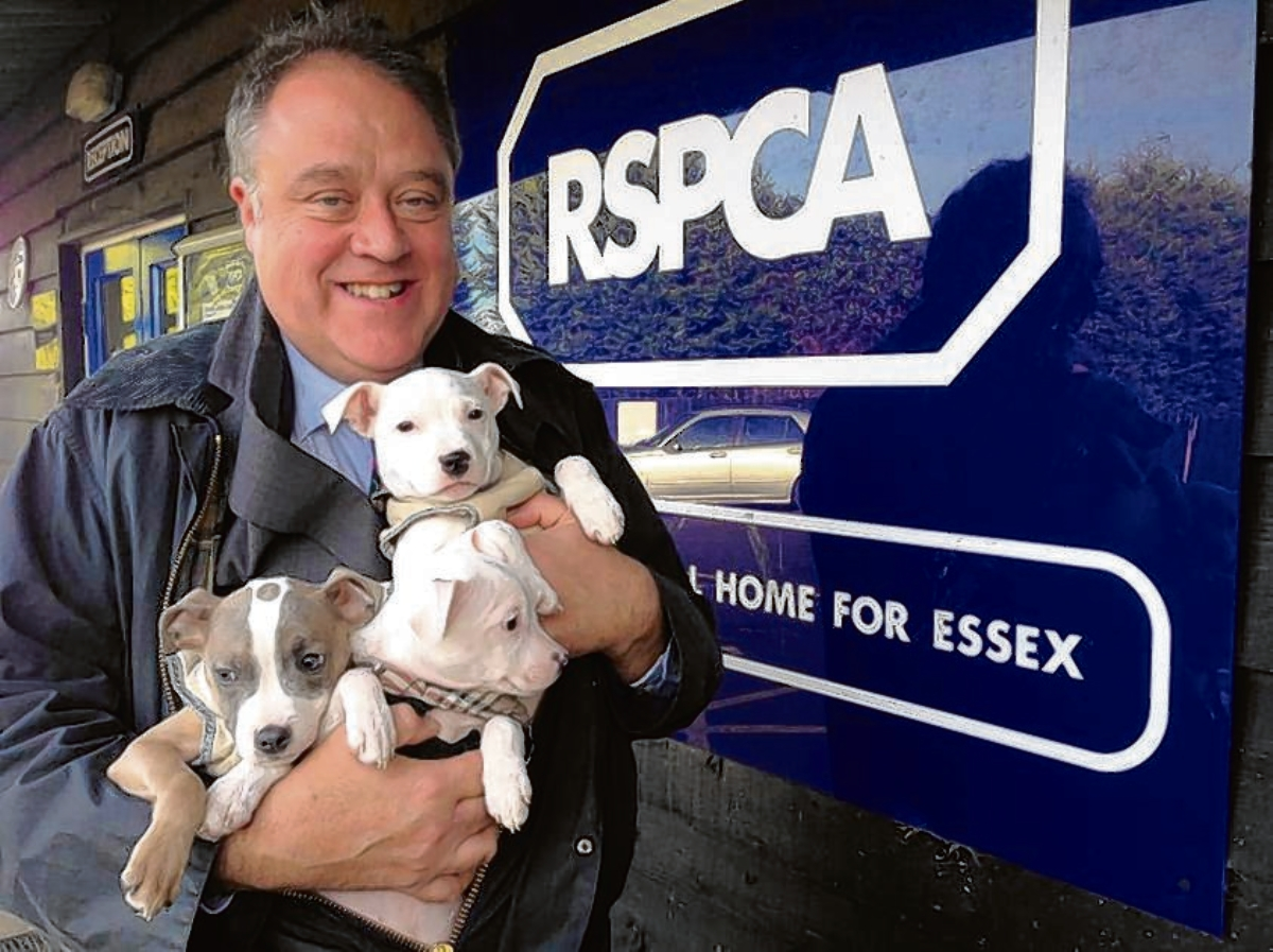 Richard Howitt has a cuddle with some puppies at the centre