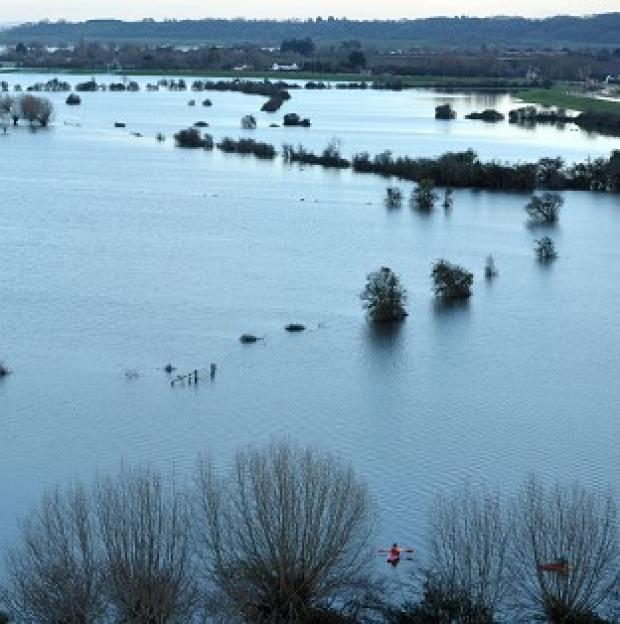 Braintree and Witham Times: Flood water on the Somerset Levels