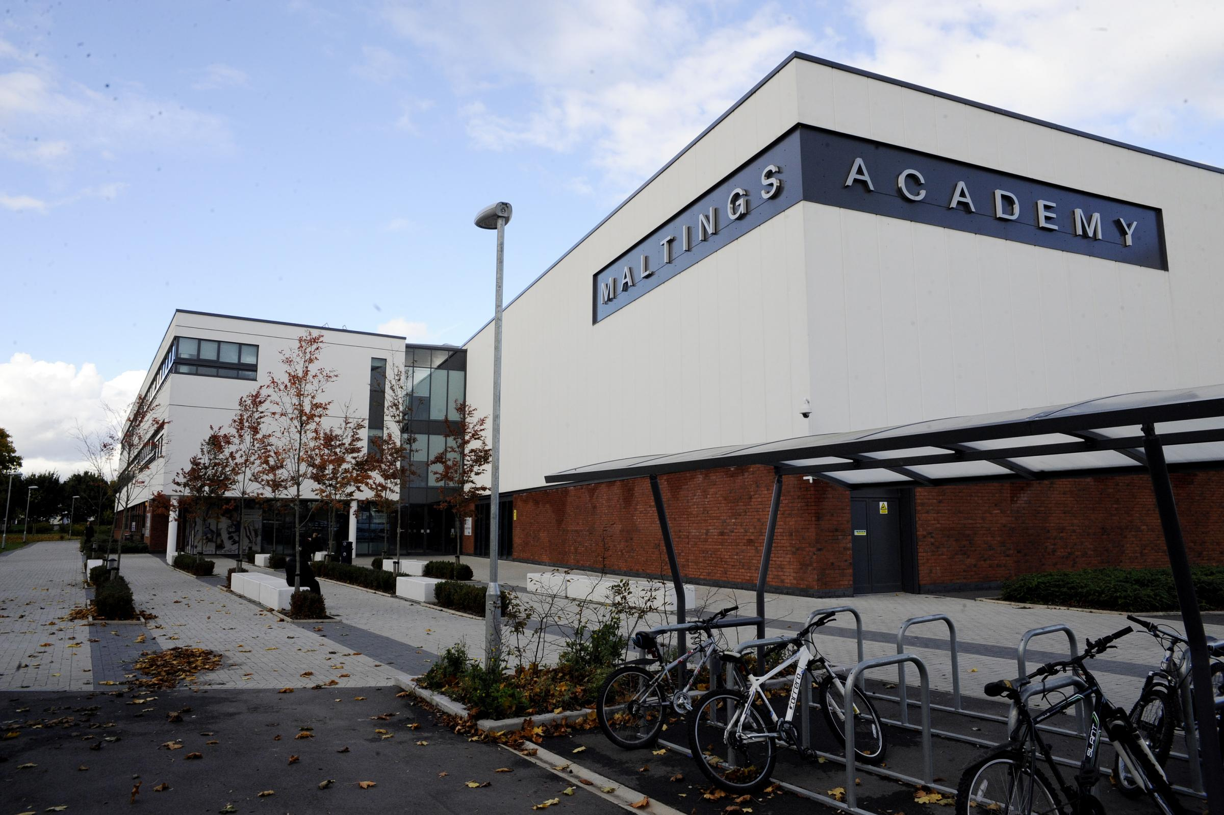 The Maltings Academy, in Spinks Lane, Witham, could be affected by the move.