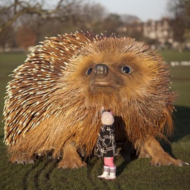 Braintree and Witham Times: Bodhi, three, looks up at a model of a hedgehog on Clapham Common in London to mark the launch of Sir David Attenborough's Natural Curiosities
