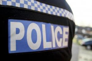 Police hunt for burglars disturbed by resident