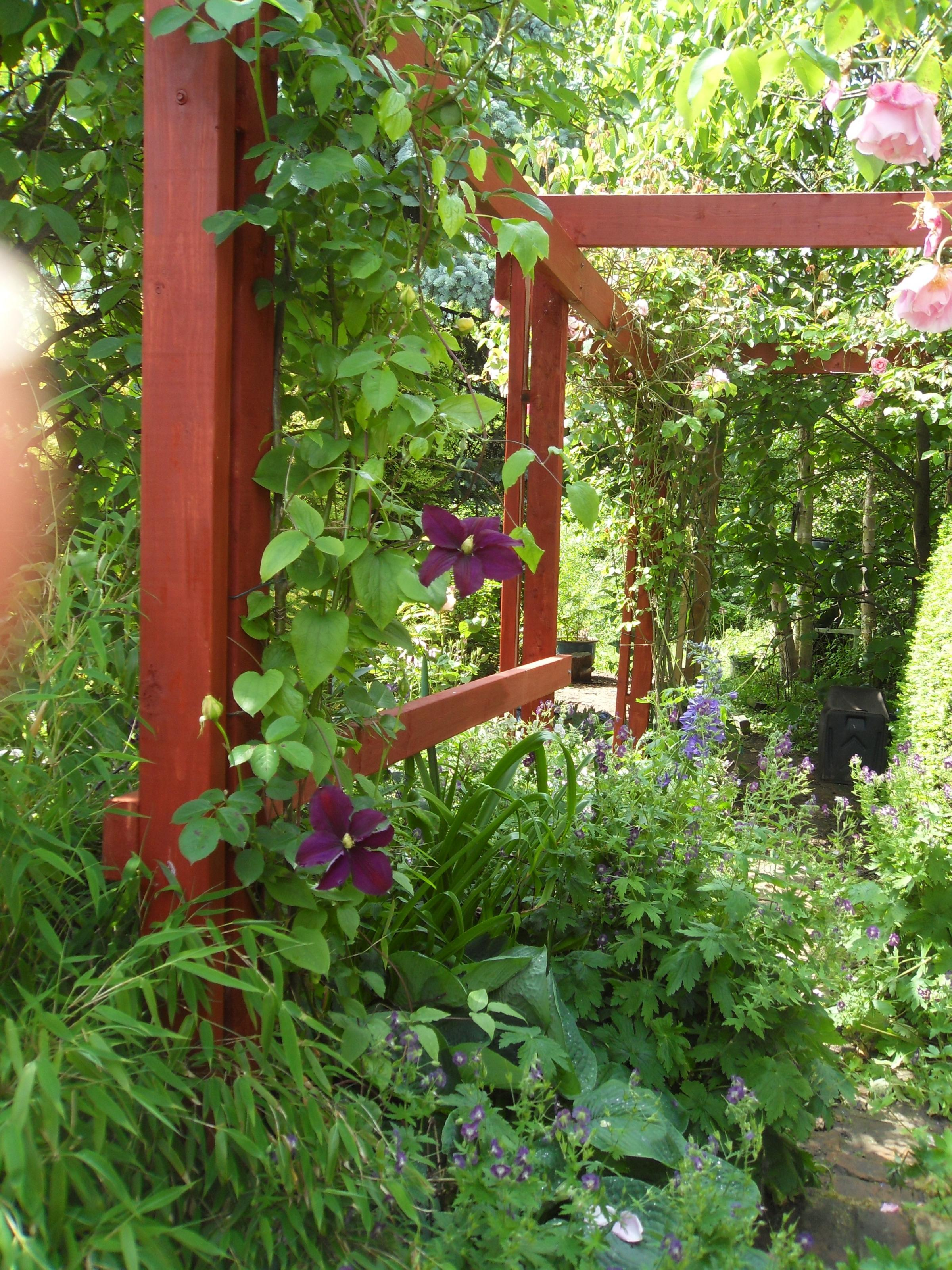 Two open garden events to enjoy