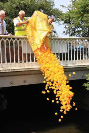Have fun with a charity duck race