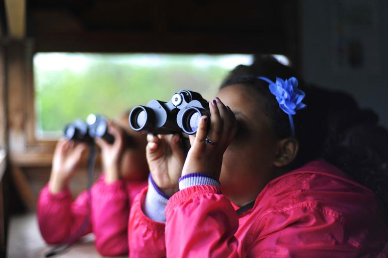 Kids' Birdwatching Club