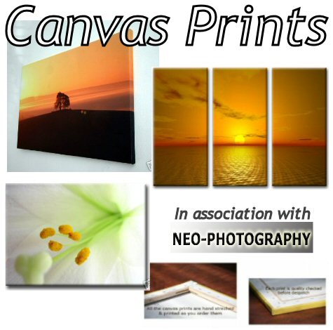 Braintree and Witham Times: Canvas Prints