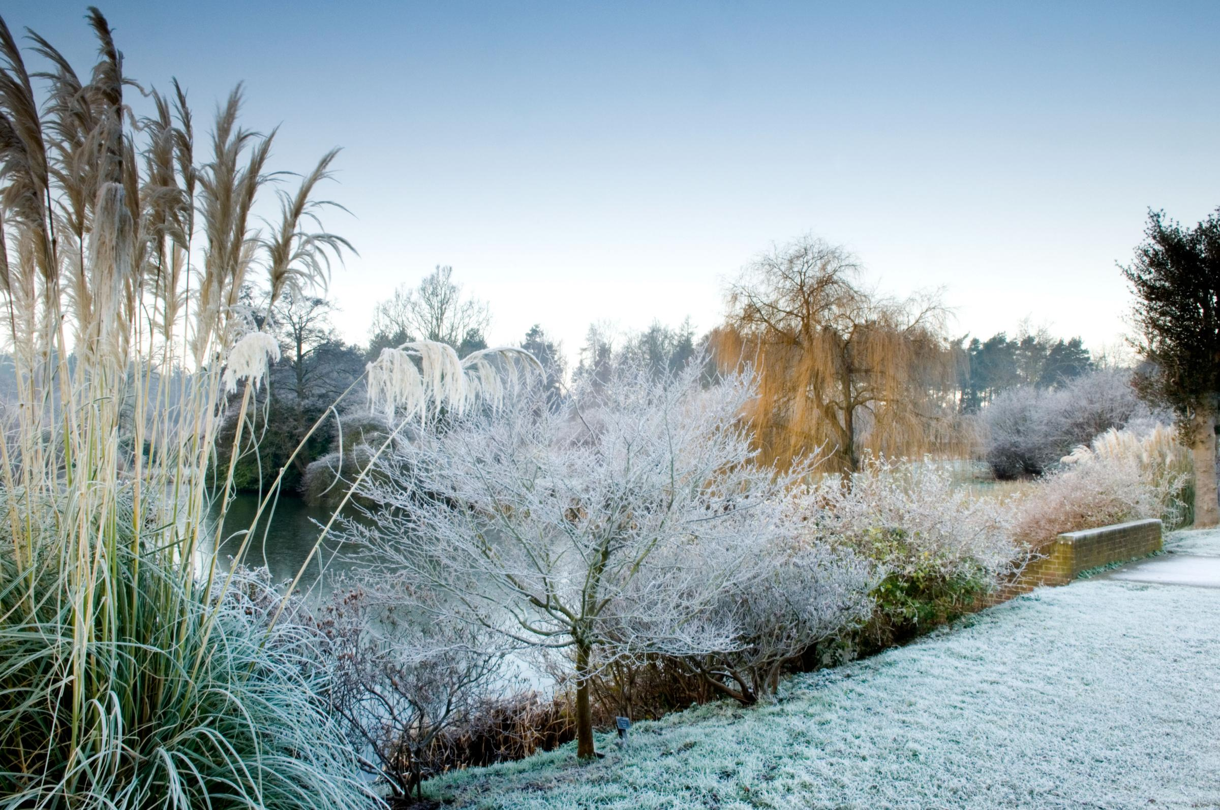 ESTATE: Winter at the Marks Hall Estate, Coggeshall. Picture - Jerry Harpur