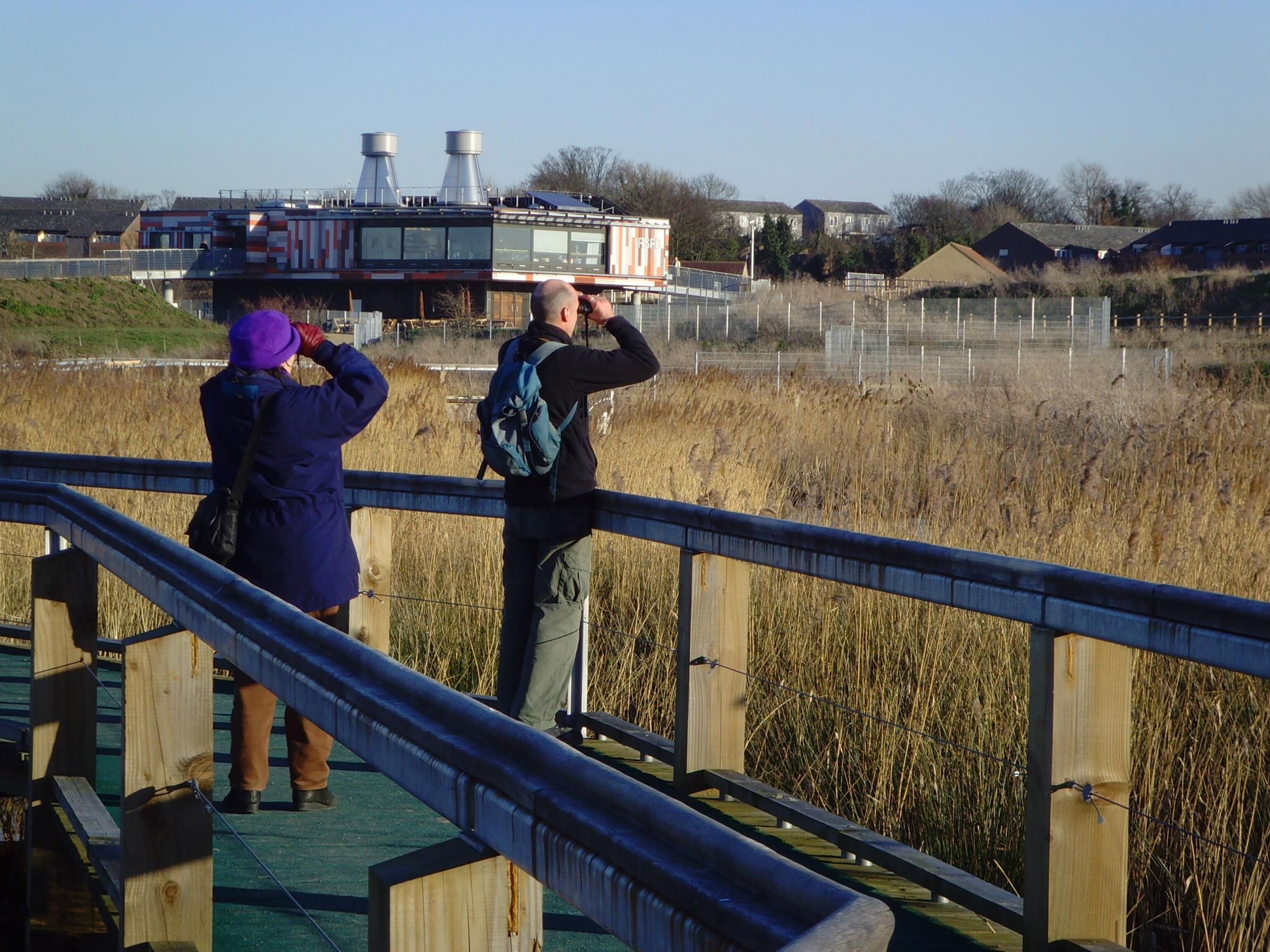 The Wildlife Walk Wednesdays